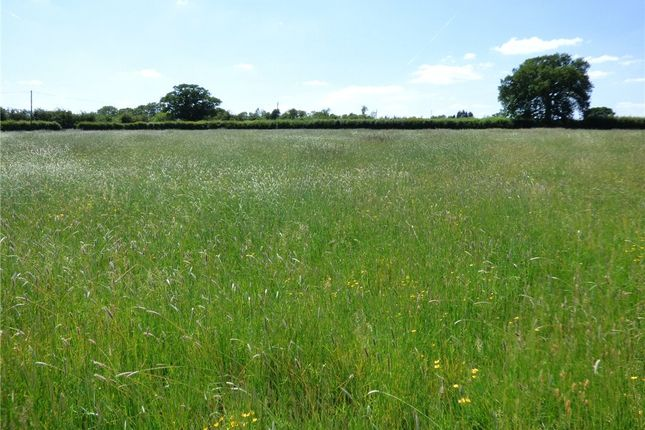 Picture No. 02 of Land At Woodlands Road, Mere, Wiltshire BA12