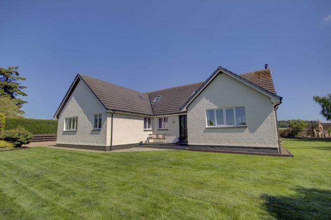 Thumbnail Detached house for sale in Kishmuil, Croft Na Creich, North Kessock, Inverness
