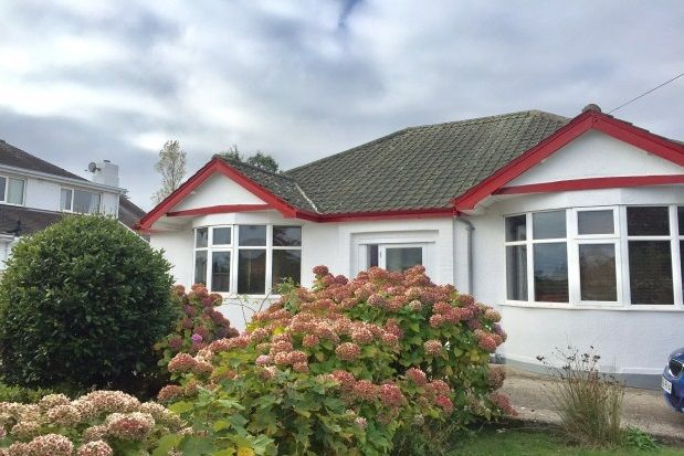 Thumbnail Bungalow to rent in Barton Hill Road, Torquay