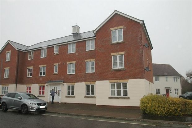 Thumbnail Flat for sale in Gavin Way, Highwoods, Colchester