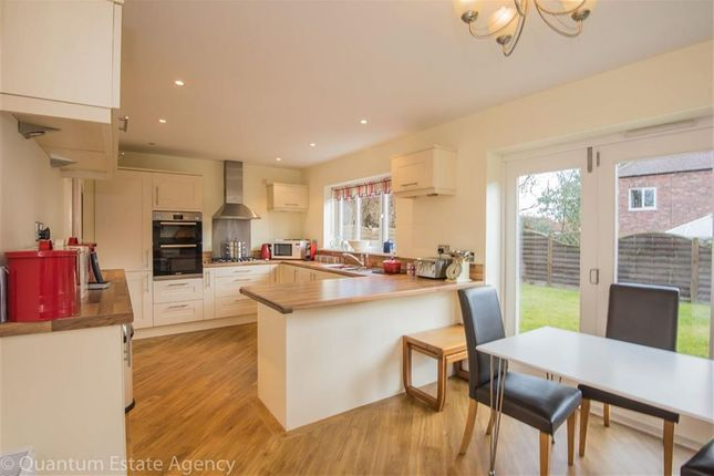 Thumbnail Detached house to rent in Academy Drive, Dringhouses, York