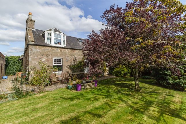 Thumbnail Detached house for sale in North Quilkoe Farmhouse, Forfar, Angus