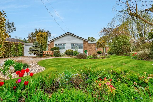 Thumbnail Detached bungalow for sale in High Road, Leavenheath, Colchester