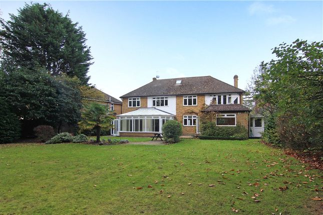 Thumbnail Detached house to rent in Coombe Neville, Coombe
