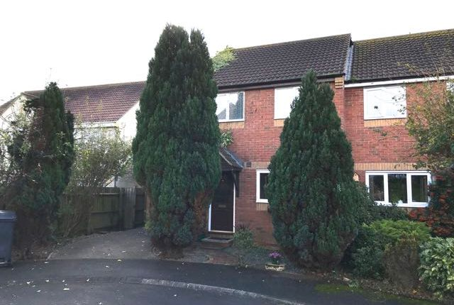 Thumbnail Semi-detached house to rent in Alexanders Close, Meare
