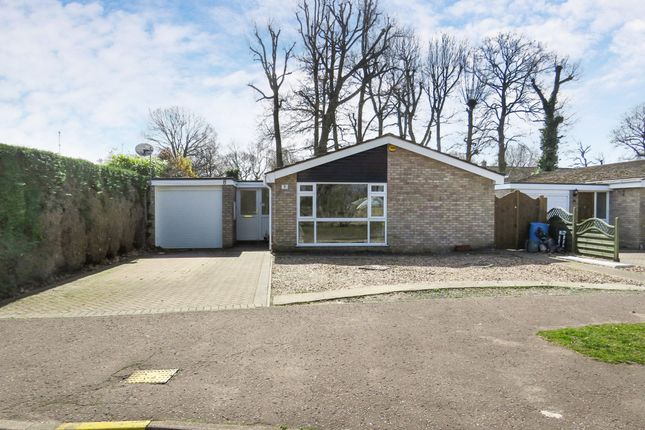 Thumbnail Detached bungalow for sale in Delamere Road, Colchester