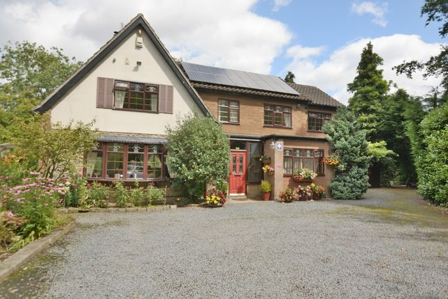 Thumbnail Property for sale in The Willows, Willow Close, Hessay, York