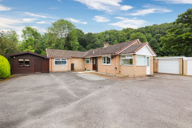 Thumbnail Detached bungalow for sale in Five Trees Avenue, Sheffield