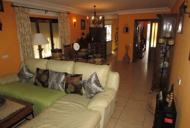 Lounge of Spain, Málaga, Marbella, Nueva Andalucía
