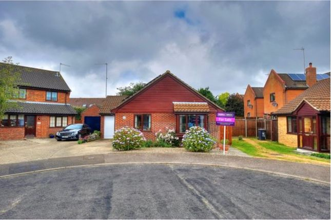 Thumbnail Bungalow to rent in Farm View, North Walsham