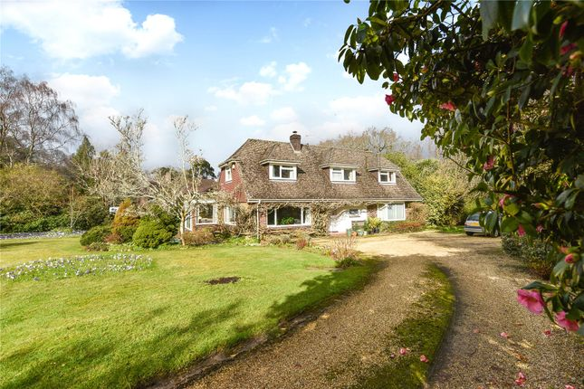 Thumbnail Bungalow for sale in Armstrong Road, Brockenhurst, Hampshire