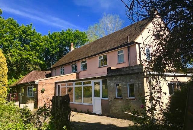 Thumbnail Semi-detached house to rent in Orchard Farm, East Grinstead, West Sussex