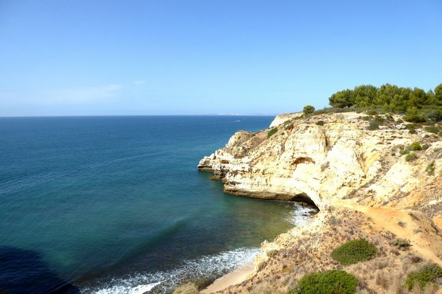 Thumbnail Land for sale in 190Ha Land In Algarve, Portugal, Carvoeiro, Lagoa, Central Algarve, Portugal