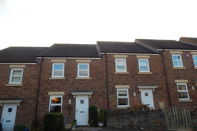 Thumbnail Terraced house to rent in Silure View, Usk