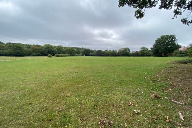 Thumbnail Land to let in Bourne Lane, Hamstreet, Ashford