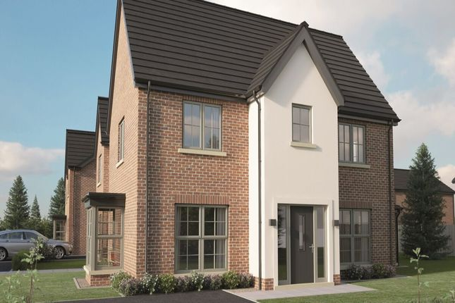 Thumbnail Semi-detached house for sale in Type E, Hydepark Mews, Newtownabbey
