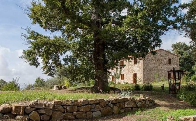 Thumbnail Country house for sale in Massa Marittima, Massa Marittima, Grosseto, Tuscany, Italy