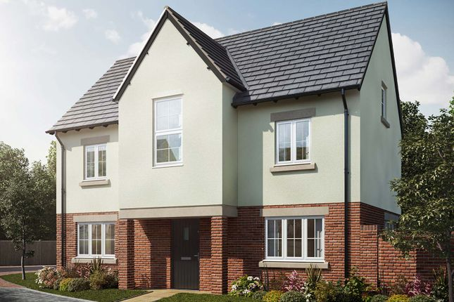 """Thumbnail Detached house for sale in """"The Wallington"""" at Holden Close, Biddenham, Bedford"""
