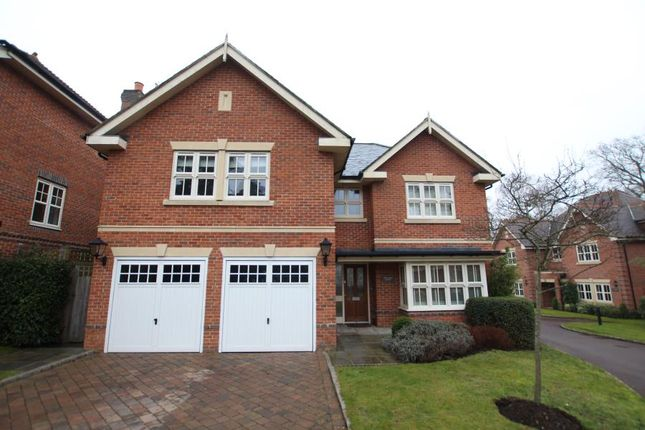 Thumbnail Detached house to rent in Woodham Gate, Woking