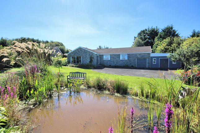 Thumbnail Detached bungalow for sale in 7 Millhall, Kirkcudbright