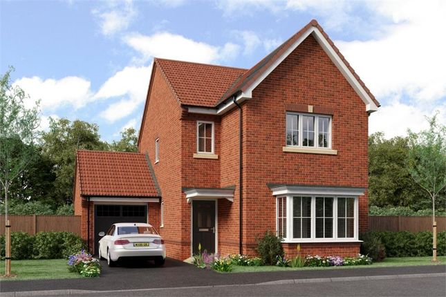 """Thumbnail Detached house for sale in """"Esk"""" at Southport Road, Chorley"""
