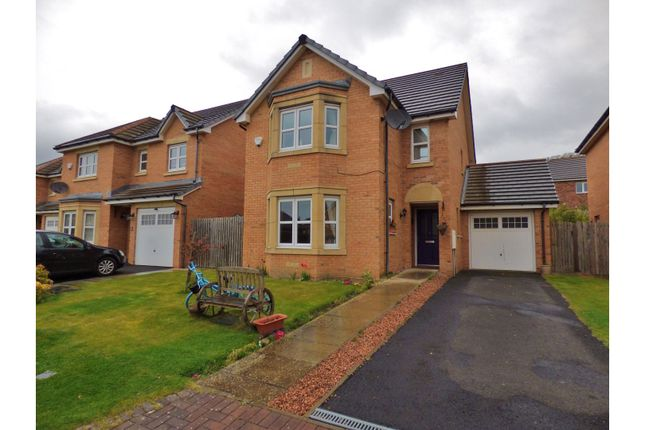 Thumbnail Detached house for sale in Oxcars Avenue, Burntisland