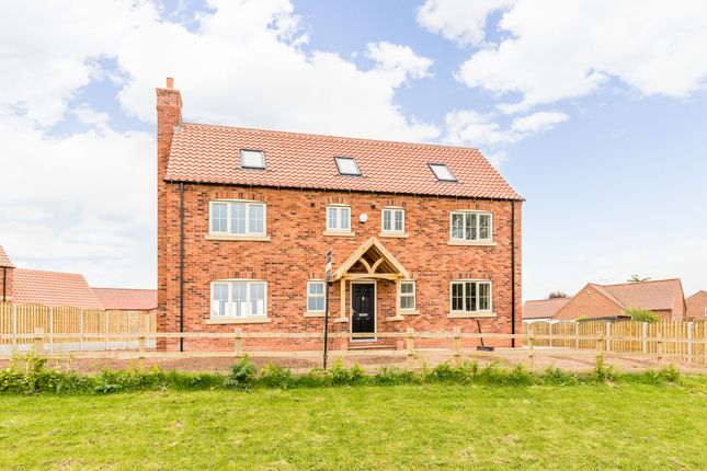 Thumbnail Property for sale in Thorpe Farm, Headon, Retford