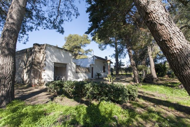 Sp55 Oria Brindisi Puglia Italy 2 Bedroom Country House For Sale 46734361 Primelocation