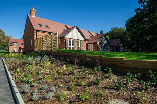 Thumbnail Cottage for sale in New Build, 9 Meadow View, Moat Park, Great Easton, Essex