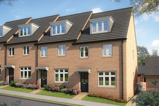 "Thumbnail Terraced house for sale in ""The Beech"" at Irthlingborough Road, Wellingborough"