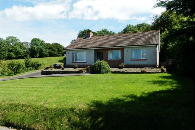 Thumbnail Detached bungalow for sale in Genau'r Glyn, Felinfach, Lampeter, Ceredigion