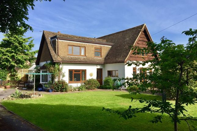 Thumbnail Detached house for sale in Manor Way, Lee-On-The-Solent
