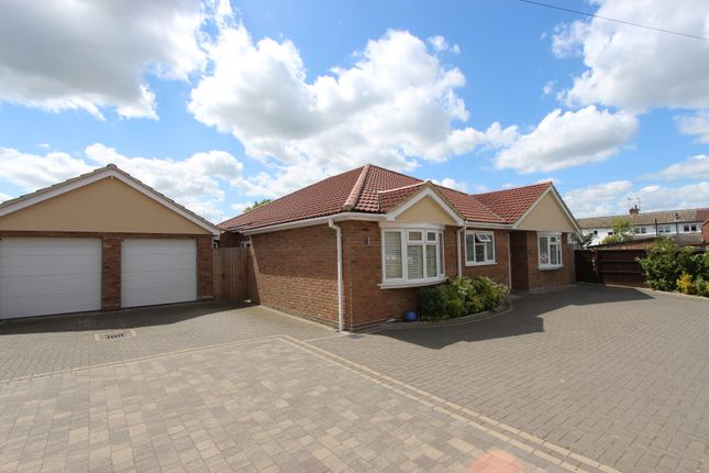 Thumbnail Detached bungalow for sale in Willow Close, Rayleigh