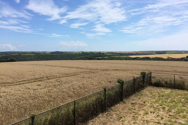 Thumbnail Land for sale in Single Building Plot With Superb Views, Wembury