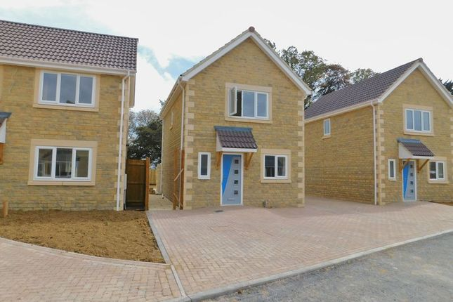 Thumbnail Detached house for sale in Thomas Bunn Close, Frome