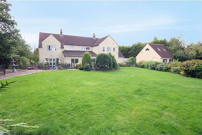 Thumbnail Detached house for sale in The Hawthorns, Eaton Bray, Beds