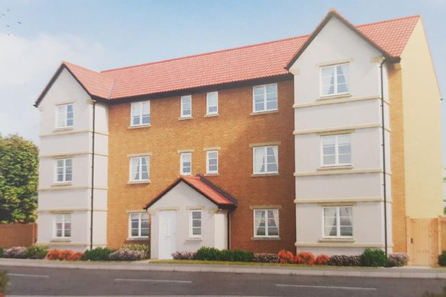 Thumbnail Flat to rent in Montacute Road, Houndstone, Yeovil
