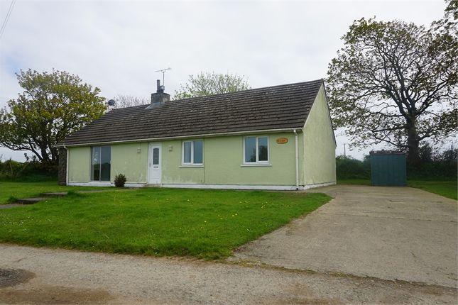 Thumbnail Detached bungalow to rent in Dan-Y-Coed, Olmarch Farm, Llandeloy, Haverfordwest, Pembrokeshire
