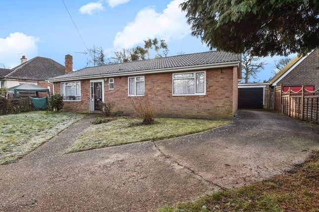 Thumbnail Detached bungalow for sale in Bisley, Woking