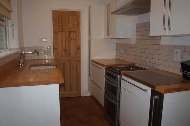 Thumbnail Terraced house to rent in Muriel Road, Norwich