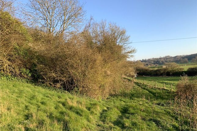 Picture No. 14 of Land At Stourpaine, Blandford, Dorset DT11
