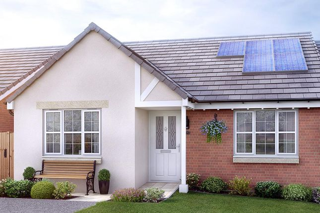 Thumbnail Semi-detached bungalow for sale in Off The Grove, Walton, Wakefield