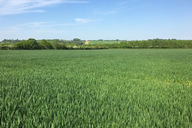 Thumbnail Commercial property for sale in Productive Arable And Pasture Land, Warmington, Banbury, Warwickshire