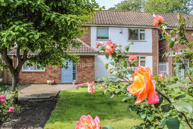 Thumbnail Detached house to rent in Broad Street, Ely