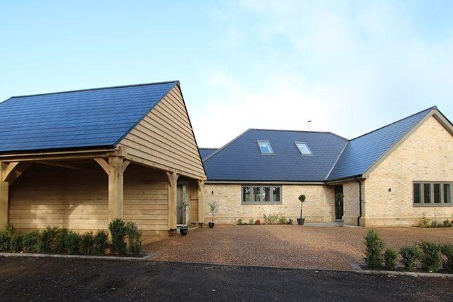 Thumbnail Detached bungalow for sale in Town Green, Great Ellingham, Attleborough