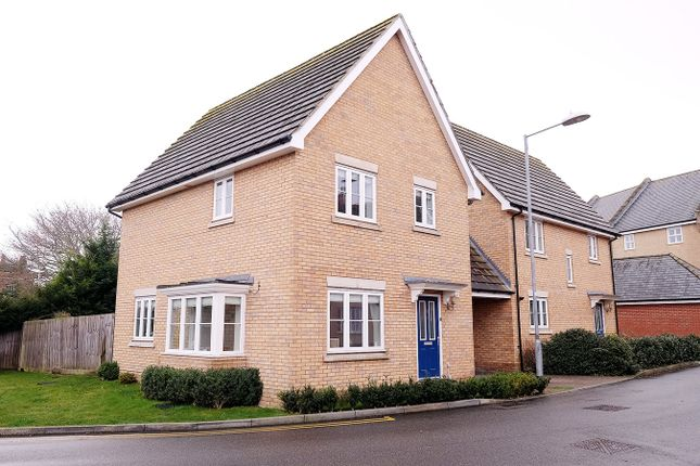 Thumbnail Detached house for sale in Greenland Gardens, Great Baddow, Chelmsford