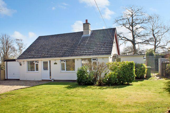 Thumbnail Detached bungalow to rent in Holt End Lane, Bentworth, Alton