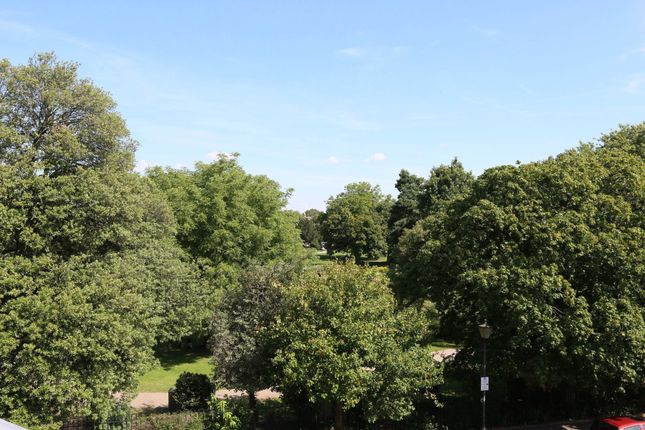 View From House of Dudley Road, London SW19