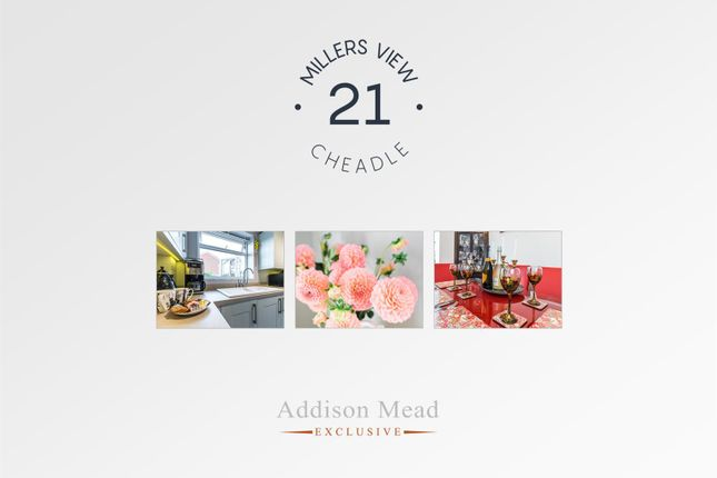 Addison Mead of Millers View, Cheadle, Stoke-On-Trent ST10