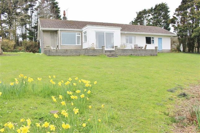 Thumbnail Detached bungalow for sale in Rhossili, Swansea